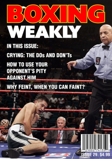 A World Without Proof Readers: Boxing Weakly
